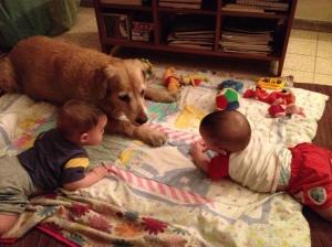 לונה שומרת על מיכאל ודניאל בגיל שנה.